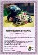 Подарочный сертификат на 8 марта_1